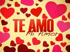 """Te amo mi amor"". What does it mean?"