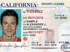 find-driver-license-number1