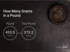 how_many_grams_in_a_pound